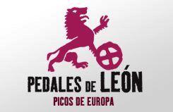 pedales-de-leon-picos-de-europa