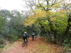 Unas rutas circulares cerca de Córdoba muy interesantes