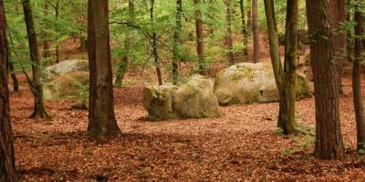 boulder-en-fontainebleau