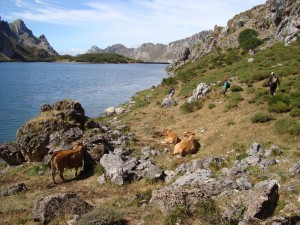 Lago-del-valle