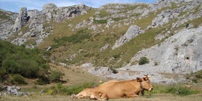 Ruta-del-valle-del-lago-en-asturias