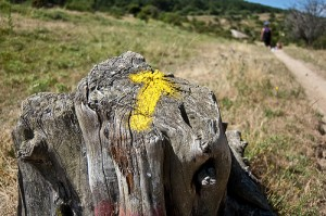 Flecha-amarilla-camino-plata