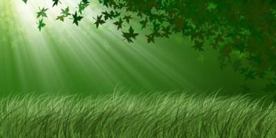 la-revolución-verde