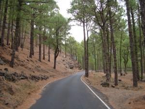 carretera-acceso-la-cumbrecita-la-palma