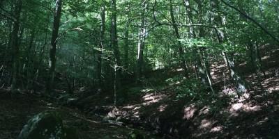 ruta-senderismo-montseny-empedrat-de-Morou