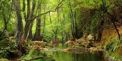 parque-natural-sierra-norte-Sevilla