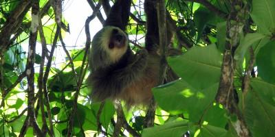 Costa_Rica-ecoturismo