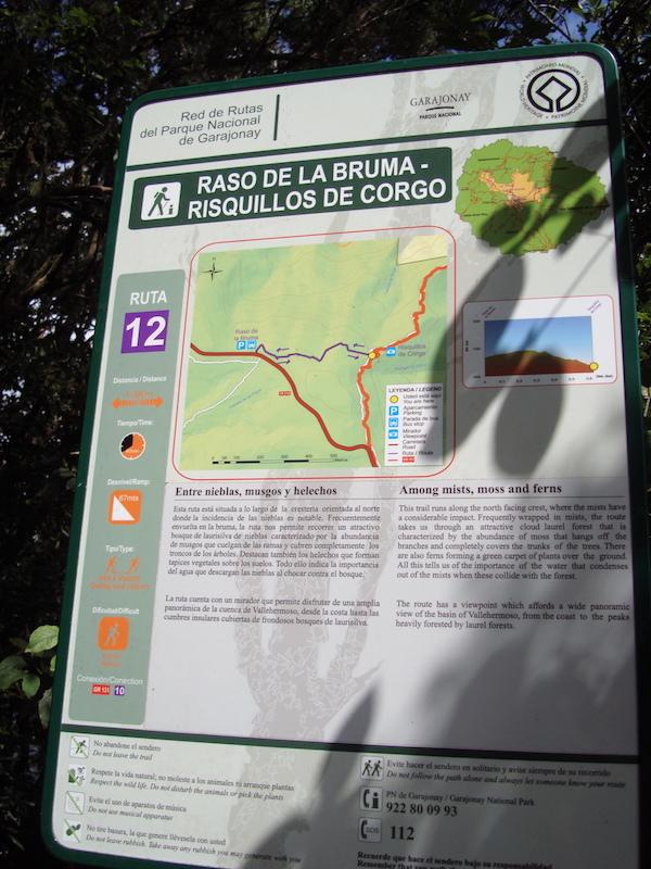 sendero-12-rasos-de-la-bruma-y gr131-garajonay