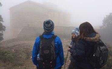 baston-trekking-bivara