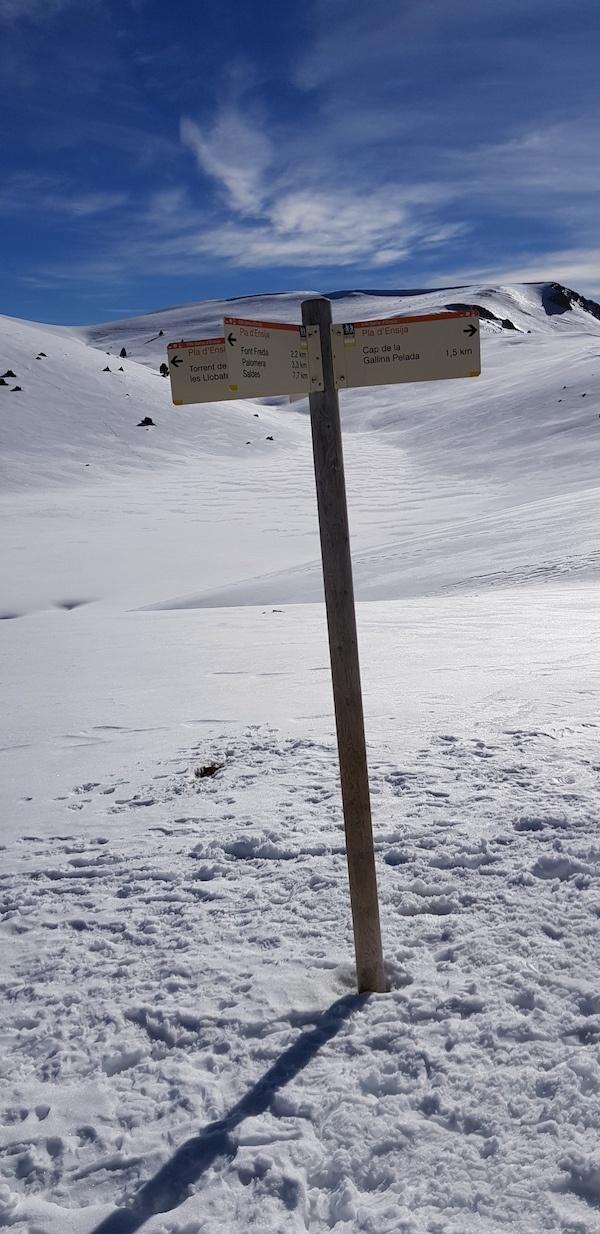 gallina-pelada-y-creu-de-ferro-con-nieve