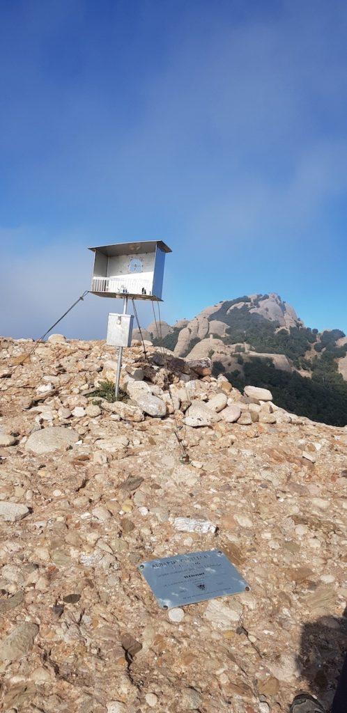 Albarda-Castellana-en-montserrat