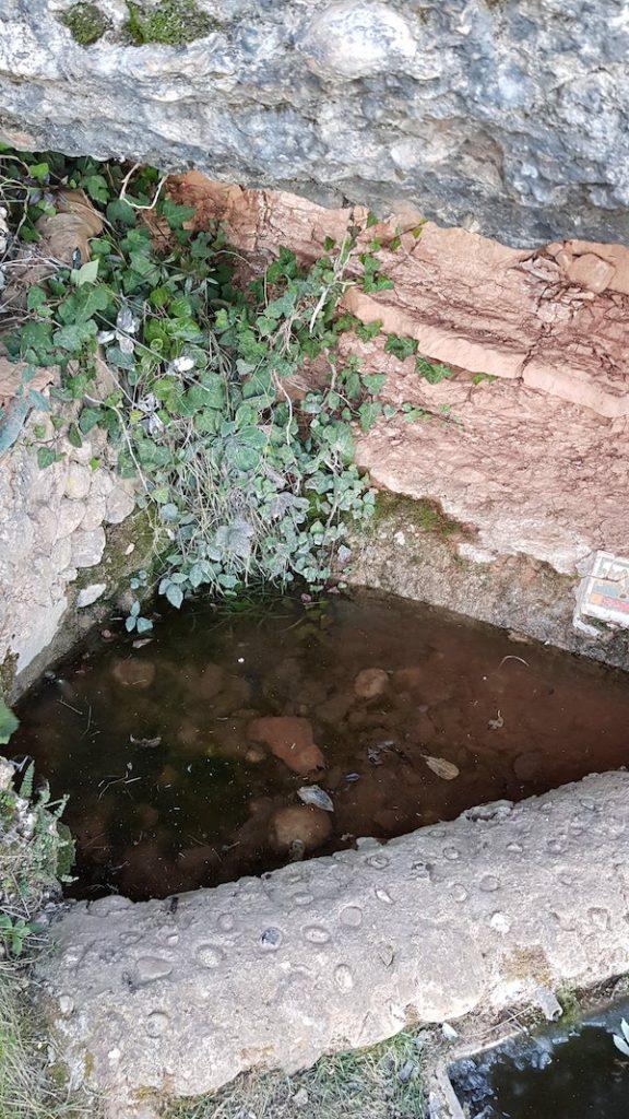 can-maçanana-foradada-coll-de-port-torrent-de-les-grutes-cova-arcada-els-pallers