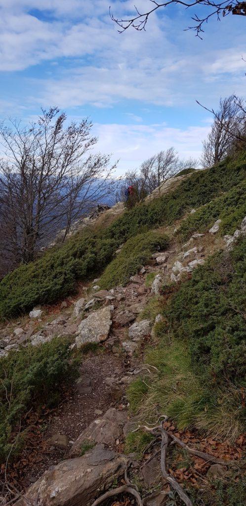les-agudes-cresta-dels-castellet-montseny