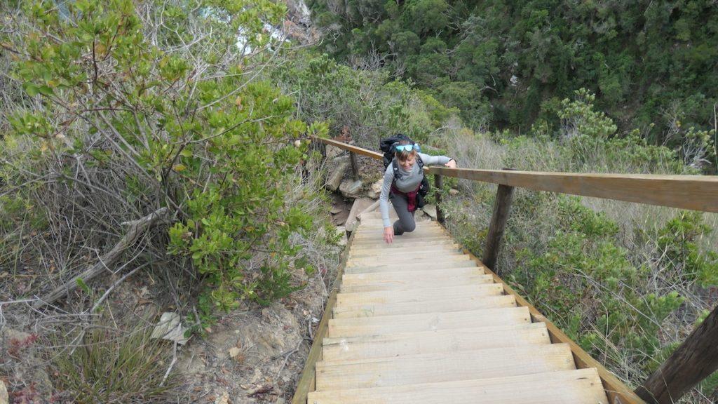 Tsitsikamma Mouth Trail