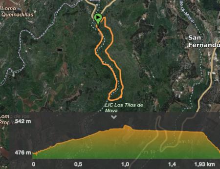 itinerario-los-tilos-de-Moya-barranco-gran-canaria
