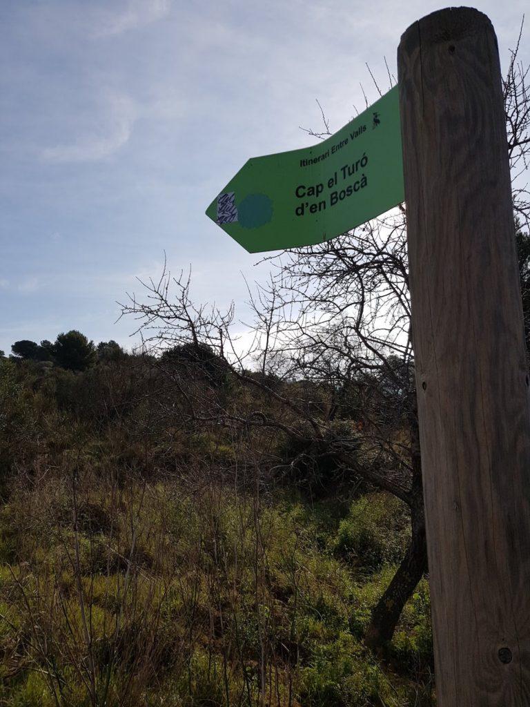 Poblat_iberic_del_Turo_d_en_Bosca