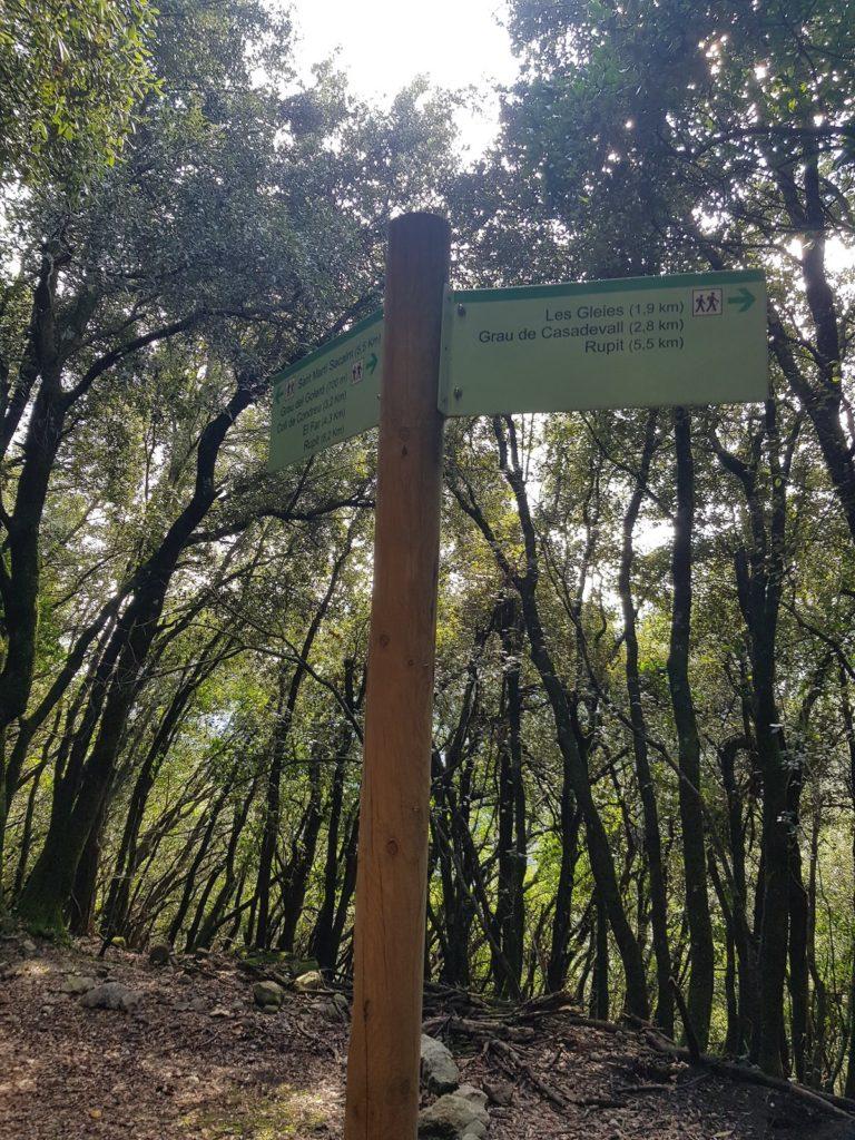 bosque_de_la_Triola